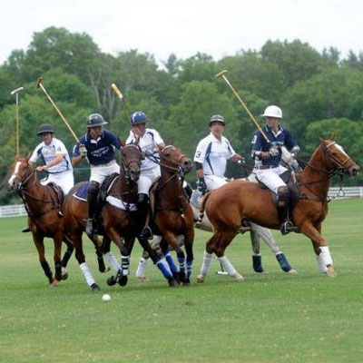 Polo Sports in New York